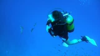 diving-what-to-do-weh-island-monster-divers